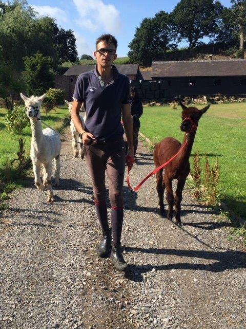IMG_7682- James with Alpacs